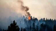 Mehrere Waldbrände wüten in Kanada
