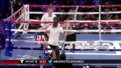 Un spectateur frappe le boxeur