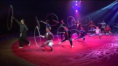 Hinter den Kulissen beim Circus Knie