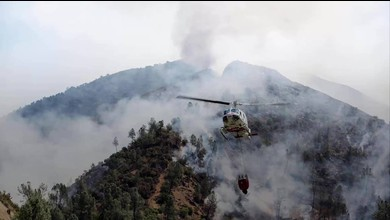 Waldbrand bei Yosemite-Nationalpark in Kalifornien